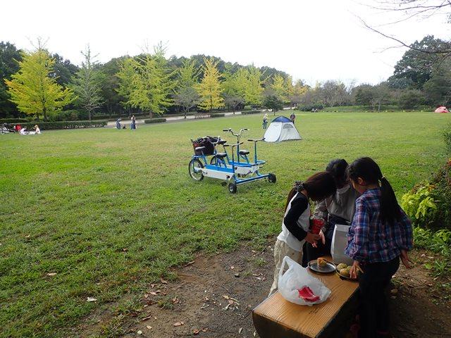 f:id:mochikichi-blog:20201003215146j:plain