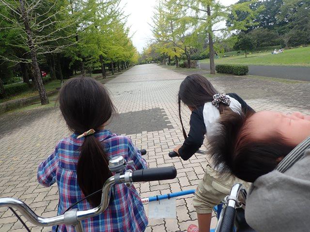 f:id:mochikichi-blog:20201003215203j:plain