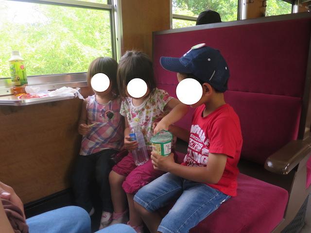f:id:mochikichi-blog:20201007204508j:plain
