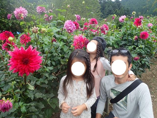 f:id:mochikichi-blog:20201009143629j:plain
