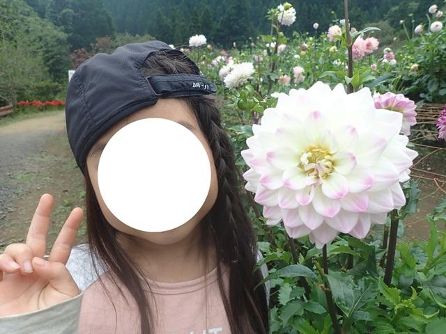 f:id:mochikichi-blog:20201009143637j:plain