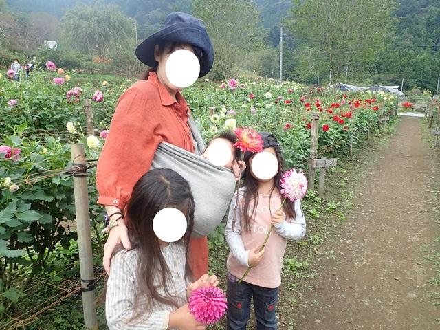 f:id:mochikichi-blog:20201009143643j:plain