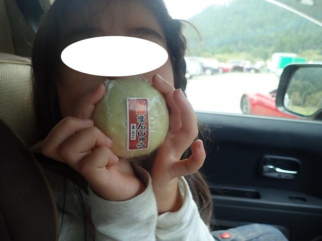 f:id:mochikichi-blog:20201009143731j:plain
