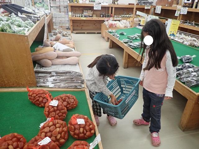 f:id:mochikichi-blog:20201009143744j:plain