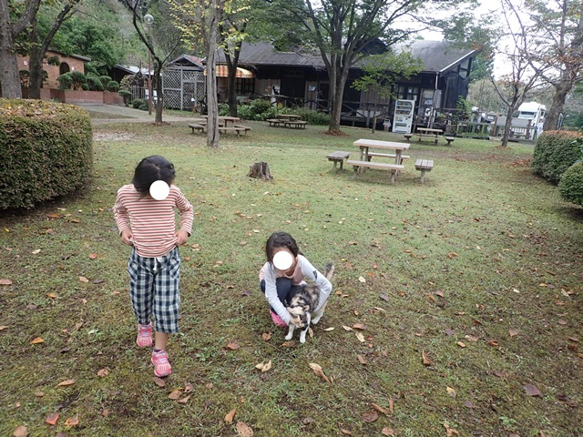 f:id:mochikichi-blog:20201009143814j:plain