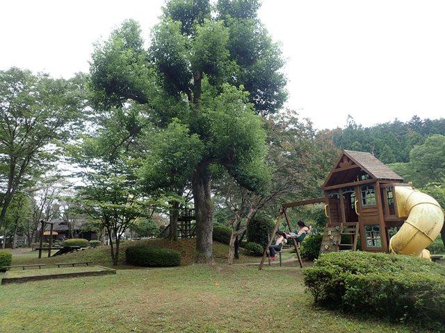 f:id:mochikichi-blog:20201009143817j:plain