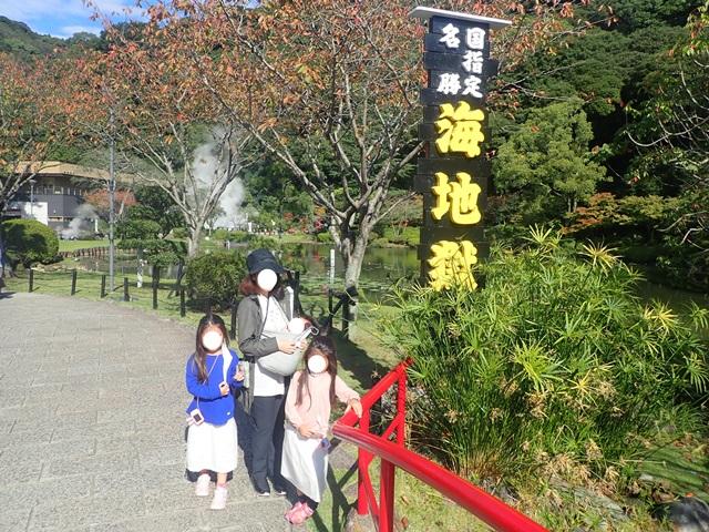 f:id:mochikichi-blog:20201018214329j:plain