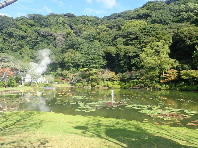 f:id:mochikichi-blog:20201018214336j:plain