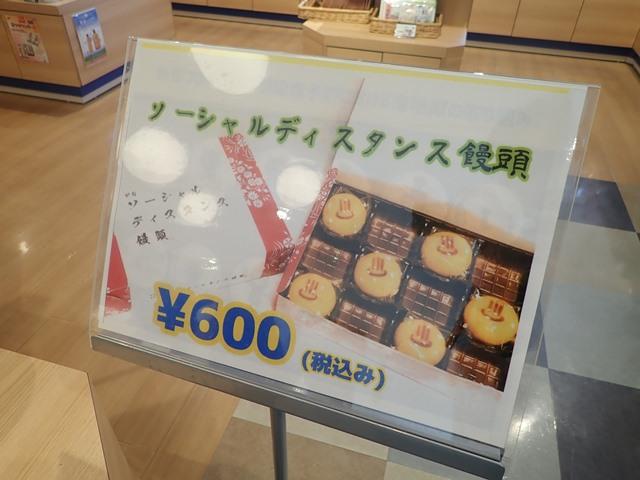 f:id:mochikichi-blog:20201018214342j:plain