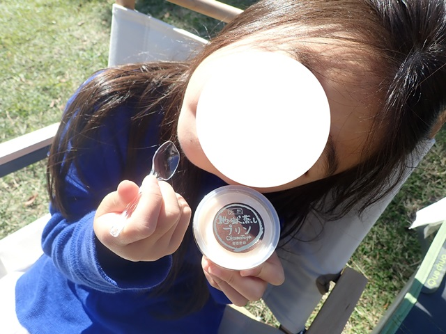 f:id:mochikichi-blog:20201018214540j:plain