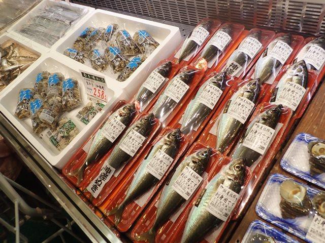 f:id:mochikichi-blog:20201019204928j:plain