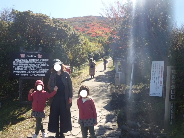 f:id:mochikichi-blog:20201020224028j:plain
