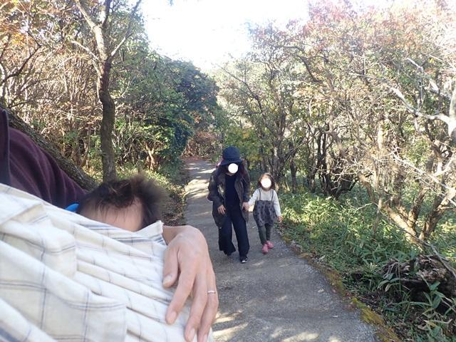 f:id:mochikichi-blog:20201020224033j:plain