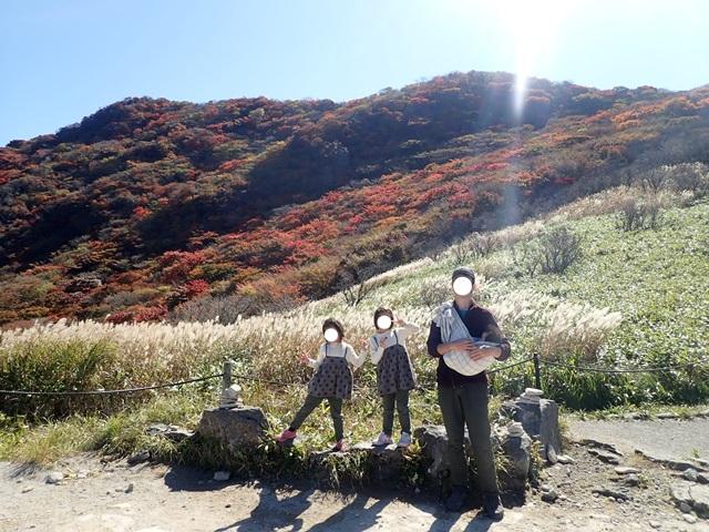 f:id:mochikichi-blog:20201020224057j:plain