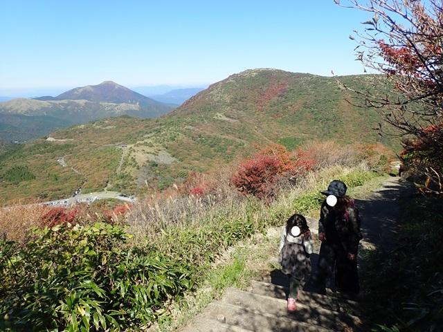 f:id:mochikichi-blog:20201020224107j:plain