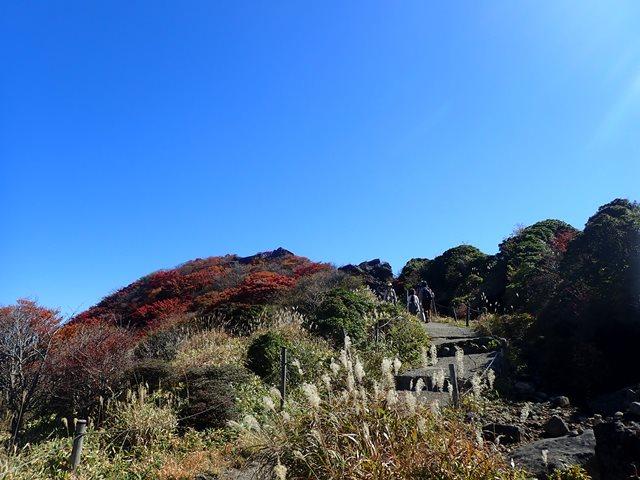 f:id:mochikichi-blog:20201020224111j:plain