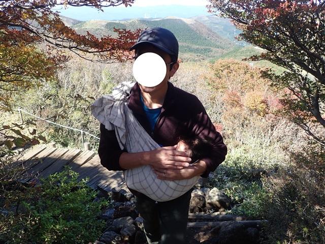 f:id:mochikichi-blog:20201020224117j:plain