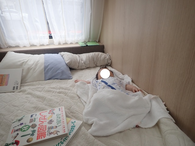 f:id:mochikichi-blog:20201023214808j:plain