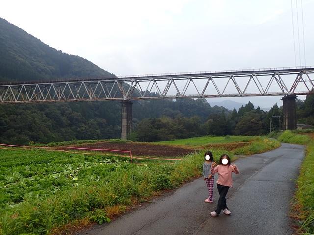 f:id:mochikichi-blog:20201023220745j:plain