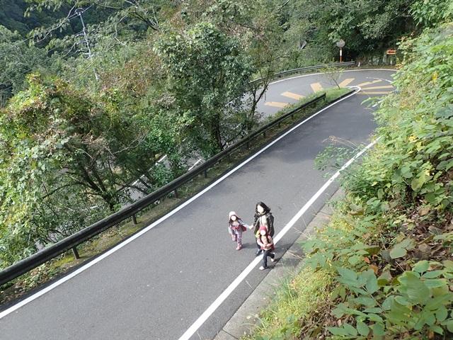 f:id:mochikichi-blog:20201023220911j:plain