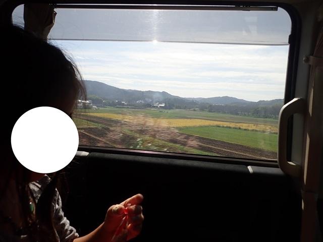 f:id:mochikichi-blog:20201108215708j:plain
