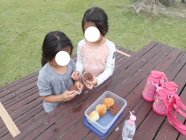 f:id:mochikichi-blog:20201108215821j:plain