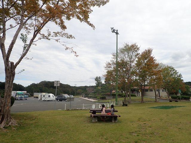 f:id:mochikichi-blog:20201108215827j:plain