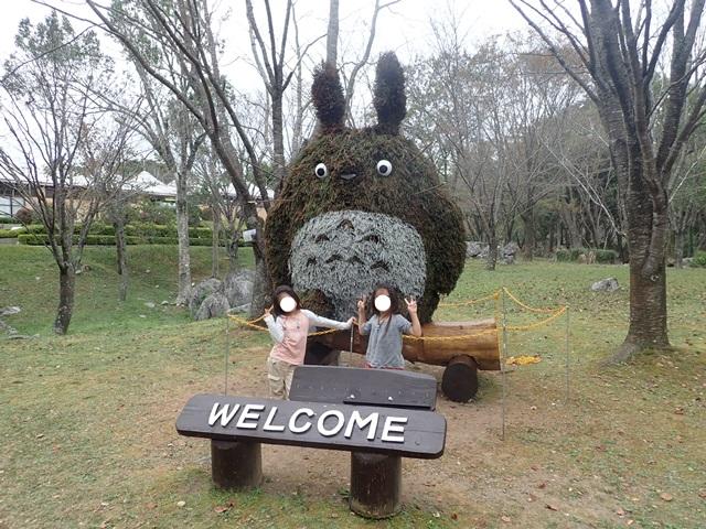 f:id:mochikichi-blog:20201108215912j:plain