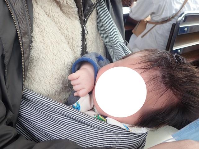 f:id:mochikichi-blog:20201113201241j:plain