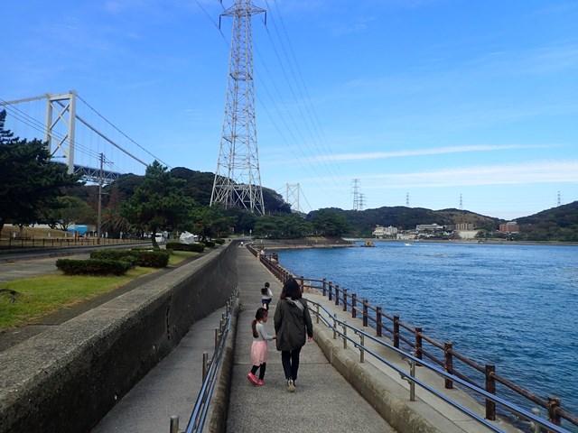 f:id:mochikichi-blog:20201113201305j:plain