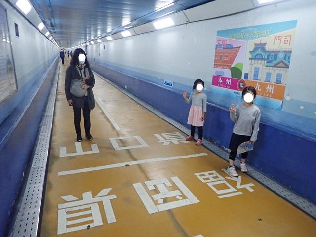 f:id:mochikichi-blog:20201113201334j:plain
