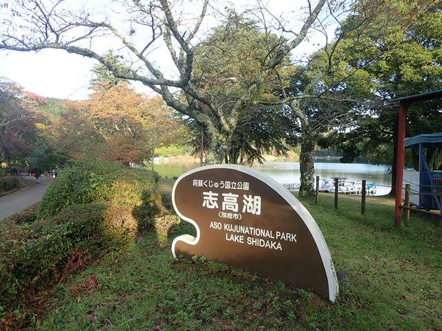 f:id:mochikichi-blog:20201113201437j:plain