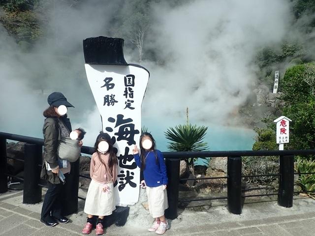 f:id:mochikichi-blog:20201125203210j:plain
