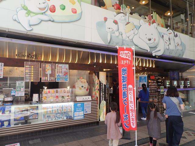 f:id:mochikichi-blog:20201223142950j:plain