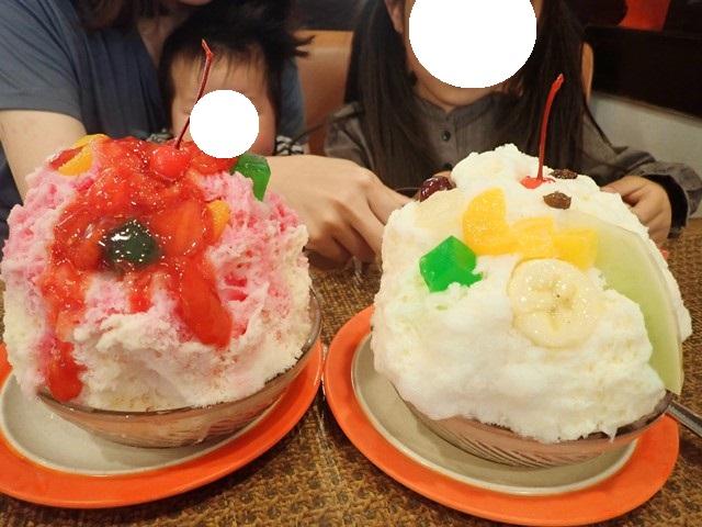 f:id:mochikichi-blog:20201223144654j:plain