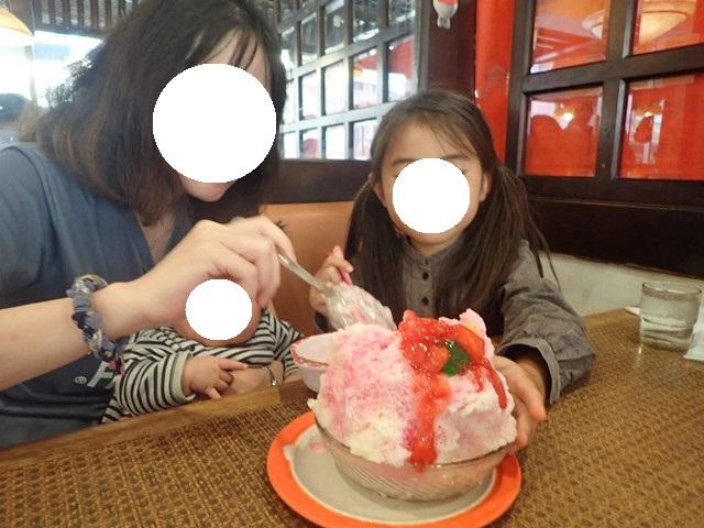 f:id:mochikichi-blog:20201223144747j:plain