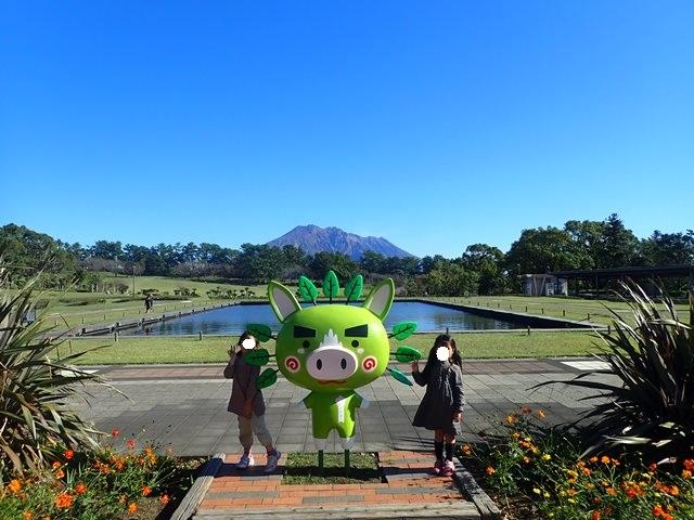 f:id:mochikichi-blog:20201223232241j:plain