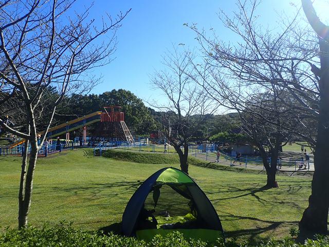 f:id:mochikichi-blog:20201223232419j:plain