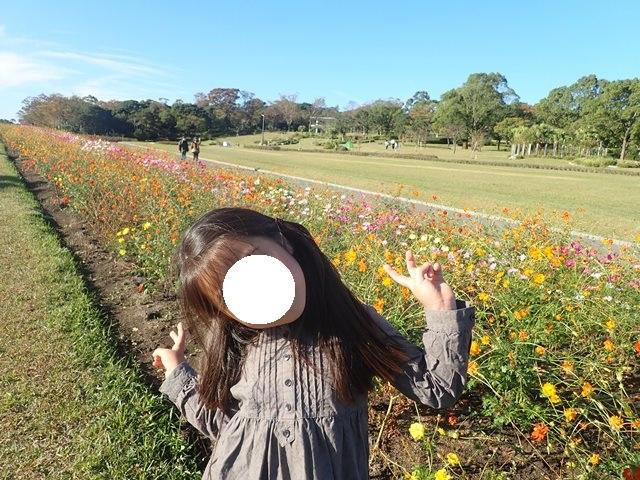 f:id:mochikichi-blog:20201224224254j:plain