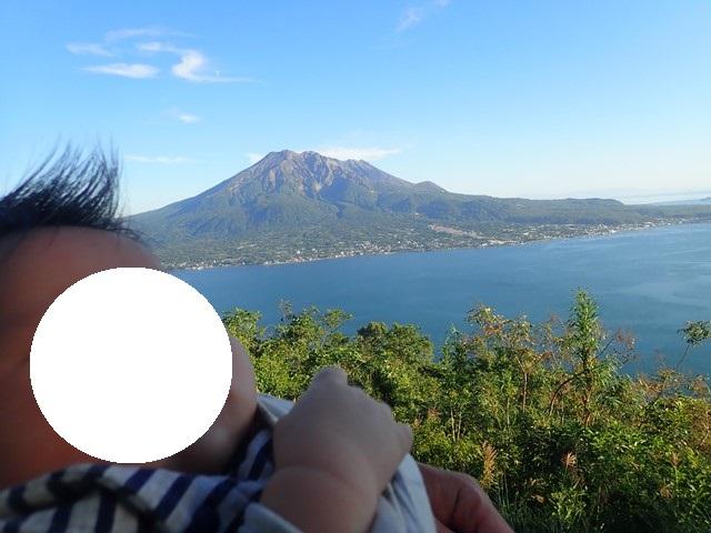 f:id:mochikichi-blog:20201224224736j:plain