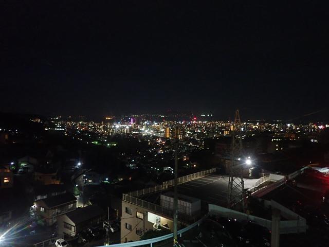 f:id:mochikichi-blog:20201224231645j:plain