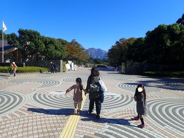 f:id:mochikichi-blog:20201225224920j:plain