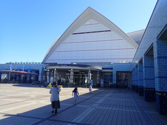 f:id:mochikichi-blog:20201230220929j:plain
