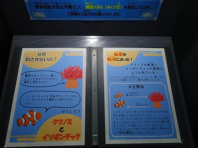 f:id:mochikichi-blog:20201230221039j:plain