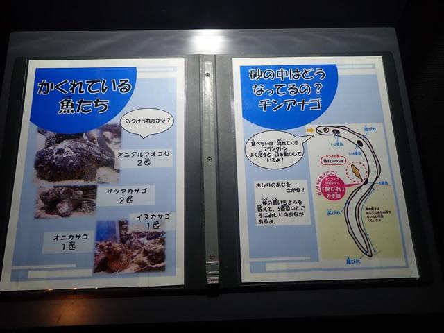 f:id:mochikichi-blog:20201230221104j:plain