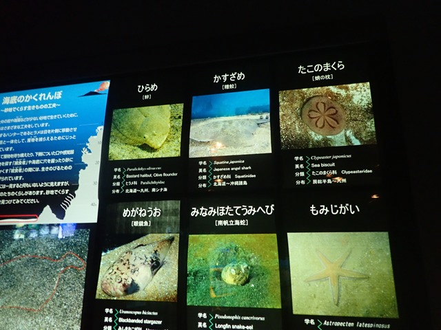 f:id:mochikichi-blog:20201230221138j:plain
