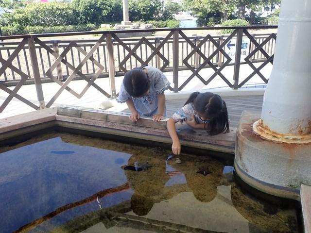f:id:mochikichi-blog:20201230221214j:plain