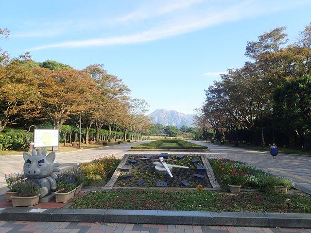 f:id:mochikichi-blog:20201230221222j:plain
