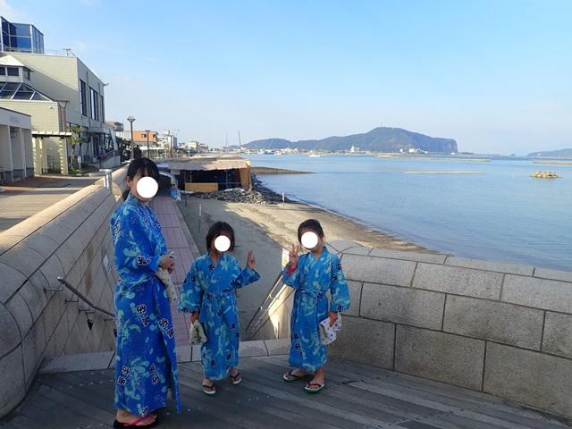 f:id:mochikichi-blog:20210103072547j:plain