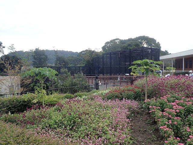 f:id:mochikichi-blog:20210103095035j:plain
